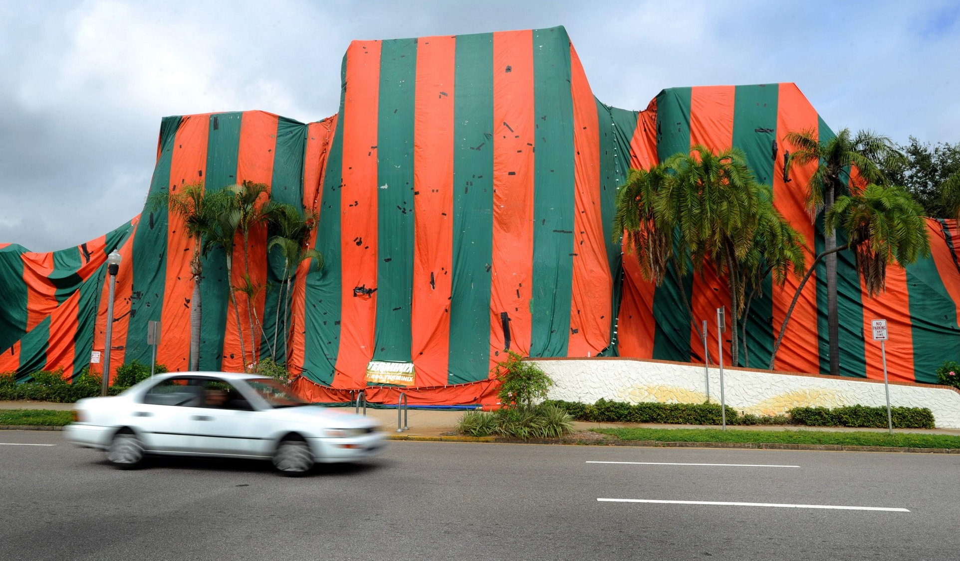 6 Signs Your Property Needs Termite Treatment & Miami Real Estate Blog | Sky Five Properties
