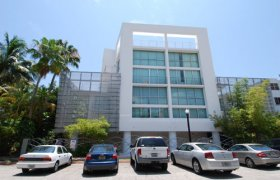 Ilona Lofts. Condominiums for sale in South Beach