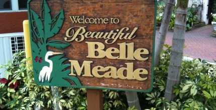 Belle Meade homes