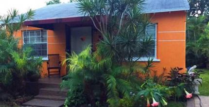 Wynwood Miami Real Estate homes